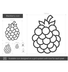Blackberry line icon vector