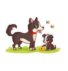 dog and puppy play ball in a green meadow mom and vector image