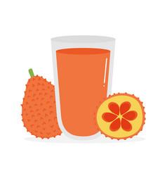 Gac fruit or bajack fruit and glass juice vector