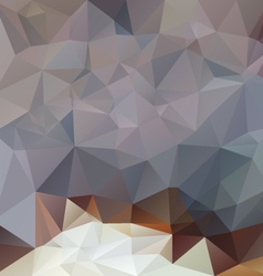 Gray brown opal polygonal triangular pattern vector
