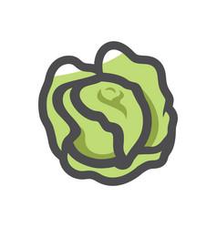 green cabbage vegetable icon cartoon vector image