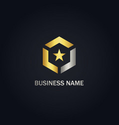 polygon star gold logo vector image