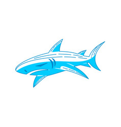 shark logo design label outline isolated vector image