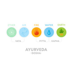 vata pitta and kapha doshas with ayurvedic icons vector image