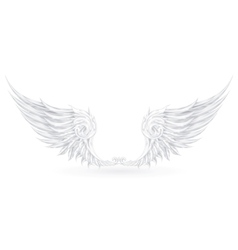 Wings White vector image