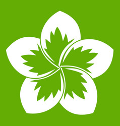 Frangipani flower icon green vector
