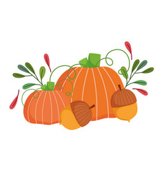 happy thanksgiving day pumpkins acorns leaves vector image