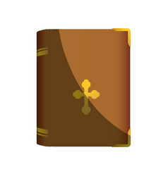 holy bible christianity vector image