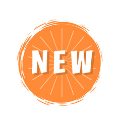 New inscription orange painted spot brush stroke vector
