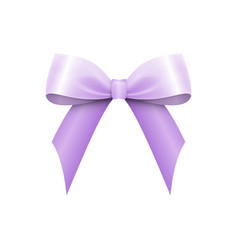 realistic shiny violet satin bow isolated vector image