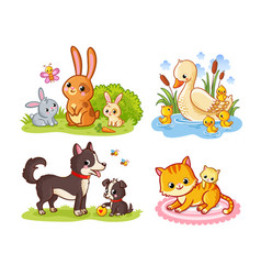 Set with pets cartoon style collection vector
