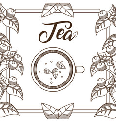 Tea cup topview vector