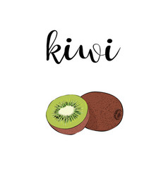 kiwi fruit color with calligraphic inscription vector image vector image
