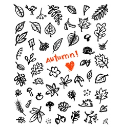 autumn background sketch vector image
