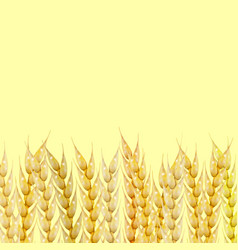 background with wheat spikelets vector image