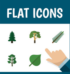 Flat icon natural set of wood park forest and vector