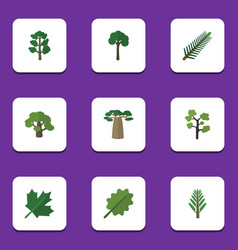 Flat icon nature set evergreen tree forest vector
