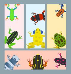 frog cartoon tropical animal cards cartoon vector image