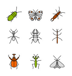 Insects color icons set vector