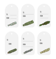 Sage smudge sticks hand-drawn set gift tags vector