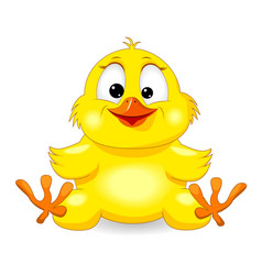 Small yellow chick vector