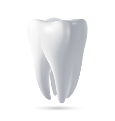 tooth 3D render vector image