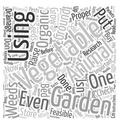 What Is Organic Vegetable Gardening Word Cloud vector image vector image