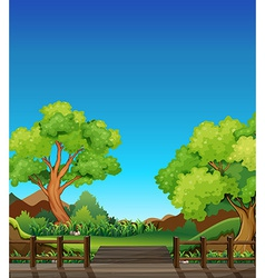 Forest and bridge vector image vector image