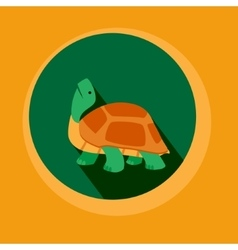 Modern Flat Design Turtle vector image vector image