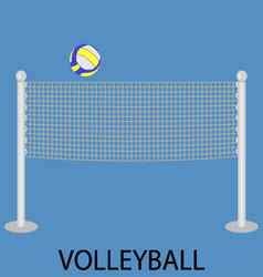 Volleyball sport icon vector image vector image