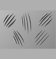 Claws scratches isolated wild animal nails rip vector