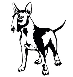Decorative standing portrait of dog bull terrier vector