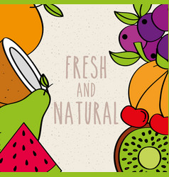 fresh and natural fruits border decoration food vector image