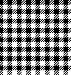 Gingham pattern vector image