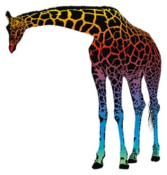 Giraffe rainbow vector