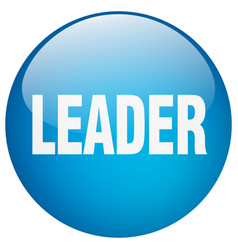 Leader blue round gel isolated push button vector