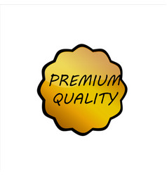 product lebel design concept gold shine vector image