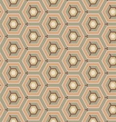 vintage pattern hexagon vector image