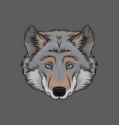 head of wolf portrait of wild animal hand drawn vector image