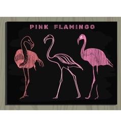 pink flamingo on chalk board vector image