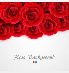 red roses background rose cover for wedding vector image vector image