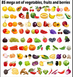 85 mega set vegetables fruits and berries on a vector image