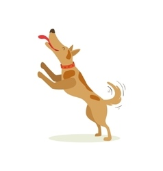 Brown Pet Dog Jumping Licking Face Animal Emotion vector
