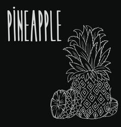 Chalkboard ripe ananas fruit vector