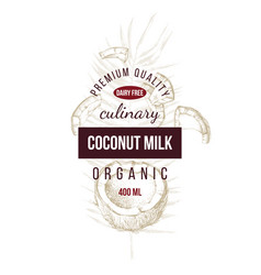 coconut label with type design over hand drawn vector image