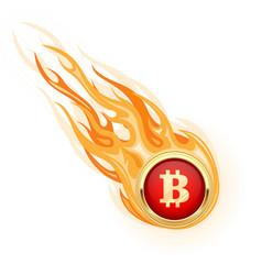 decline bitcoin - fall flaming bitcoin vector image