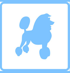 Poodle icon vector