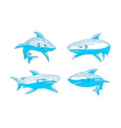 shark logo fauna outline concept template vector image
