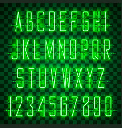 shining and glowing green neon alphabet and digits vector image