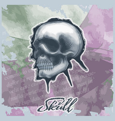 skull drawn in watercolor style on vintage vector image